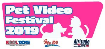 First Annual Pet Video Festival